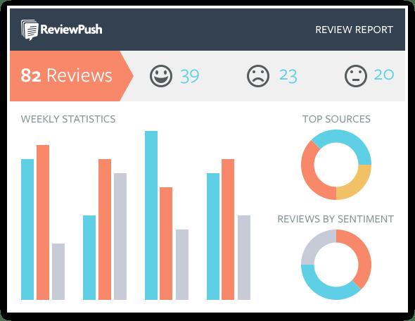 ReviewPush review report